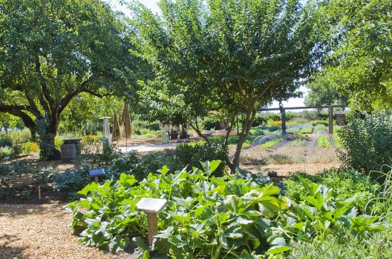 Fulton, CA: The estate grows organic vegetables and fruit in one of three large gardens.