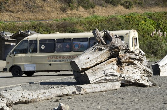 Little River, Califórnia: The beach across from the inn has giant cedar driftwood and is popular with kayakers.