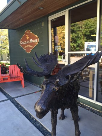 The Chocolate Moose: Moose statue