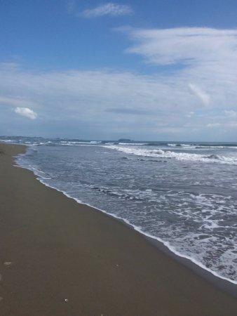 Hotel Playa Westfalia: Beautiful beach