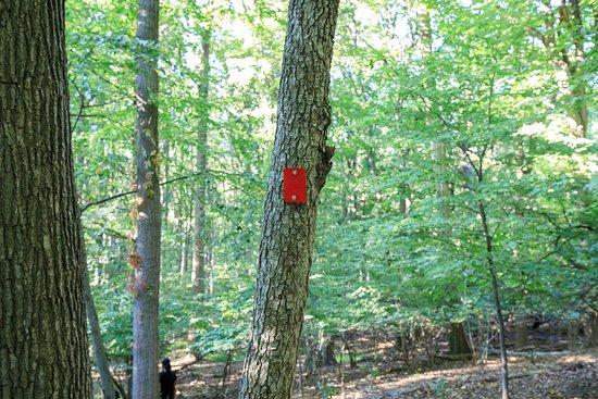 Englewood, NJ: Marked Trails