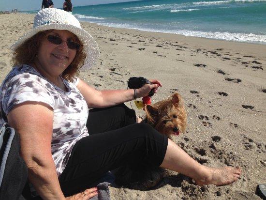 Jupiter Dog Beach: photo2.jpg