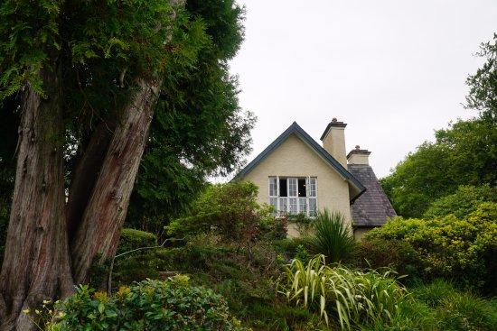 Irish Coffee Picture of Dinis Cottage Tea County Kerry TripAdvisor