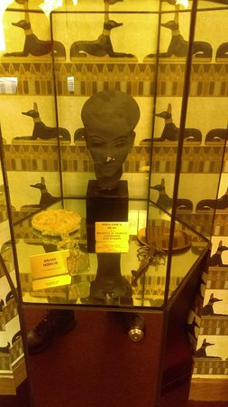Egyptian Princess Artifact from the Gold House Wadsworth, IL