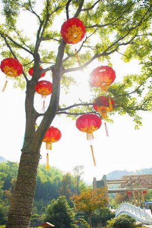 Yixing, الصين: Bamboo Park