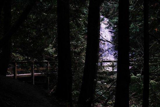 Nanaimo, Kanada: Beach Estates Park