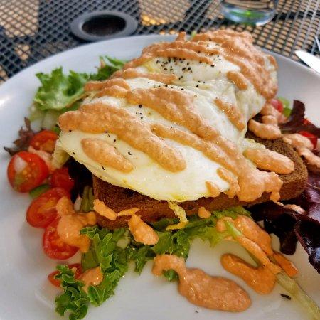 Saugatuck, MI: Breakfast Panzanella....greens, rye toast, goat cheese, Michigan sausage, eggs, tomato garlic ai