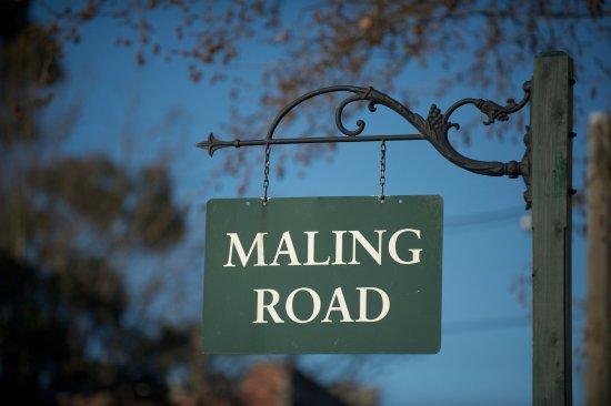 Which one? - Photo de Maling Road, Canterbury - Tripadvisor