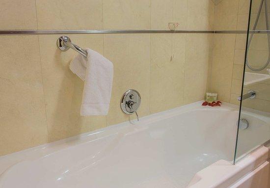 Tessera, Italia: Guest Bathroom