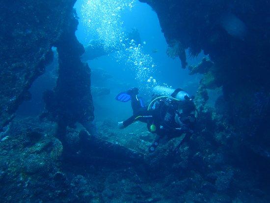 Dive Dive Dive Bali