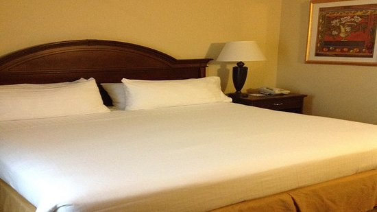 Holiday Inn Express Pigeon Forge/Dollywood: Guest Room