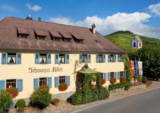 Vogtsburg im Kaiserstuhl, ألمانيا: A wine-lover's paradise surrounded by vineyards