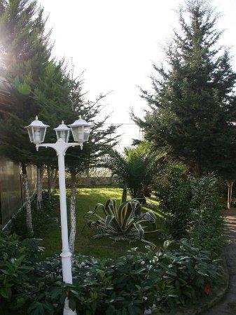 Hotel Baron: Garden view