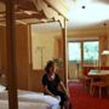 Hotel Alfaier - Bergheimat: Double room superior