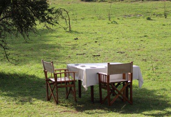 Mara Bushtops & Spa Village : My favourite dinning table