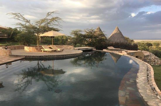 Mara Bushtops & Spa Village : Swimming Pool