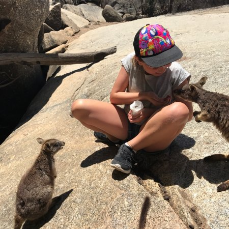Mareeba, Αυστραλία: photo6.jpg