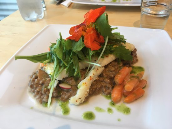 Snaefellsbaer, ไอซ์แลนด์: Cod with risotto, delicious!