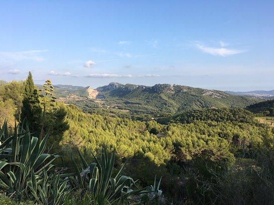 La Cadiere d'Azur, Frankrike: photo0.jpg
