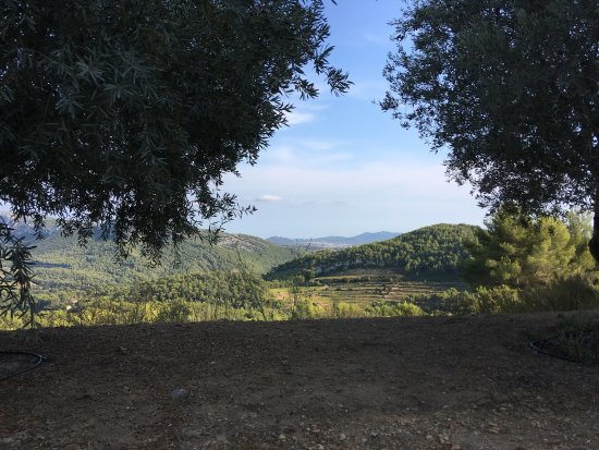 La Cadiere d'Azur, Frankrike: photo1.jpg