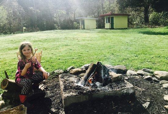 Havelock, นิวซีแลนด์: photo2.jpg
