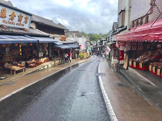 Narita Rainbow Tours: Such a quaint little street in Temple Town