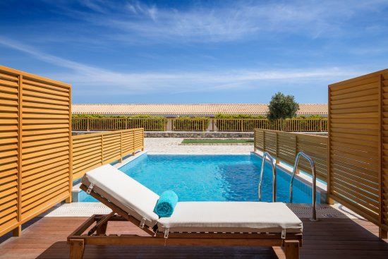 Double Room With Private Pool Picture Of Mitsis Blue