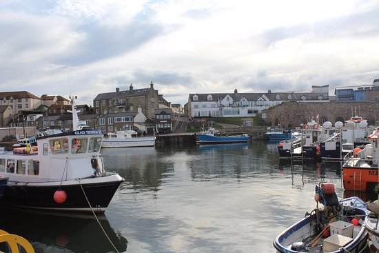 Seahouses, UK: Boats In The Harbour