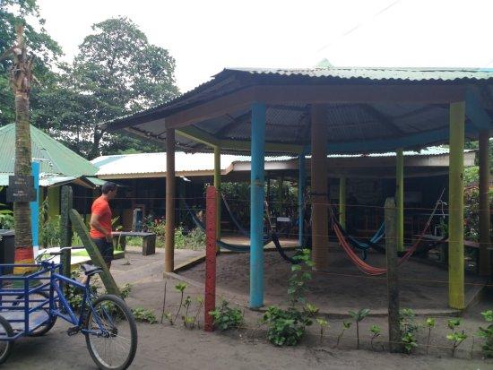 Cabinas El Icaco Tortuguero Foto