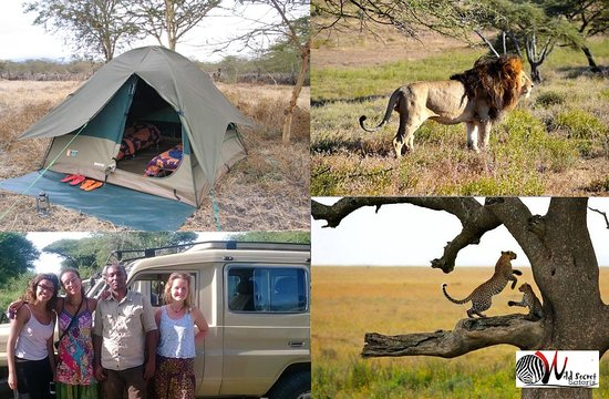 Wild Secret Safaris