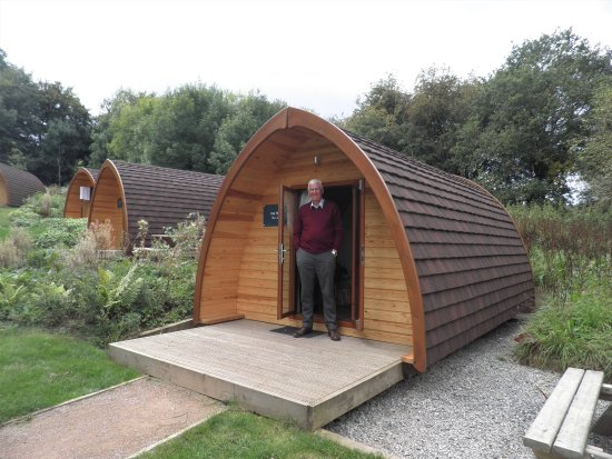 Whitemead Forest Park: Glamping Pod on Oak Hill
