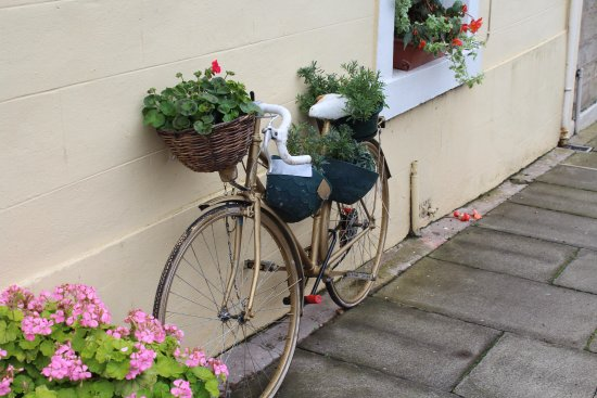Coldstream, UK: Bicycle dressed With Flowers