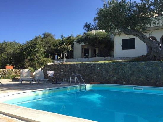 Zwembad Op Balkon : Uitzicht vanaf balkon en zwembad levante picture of levant