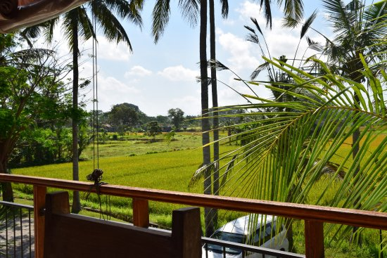 photo0 jpg picture of anulekha resort and villa ubud tripadvisor rh tripadvisor com au