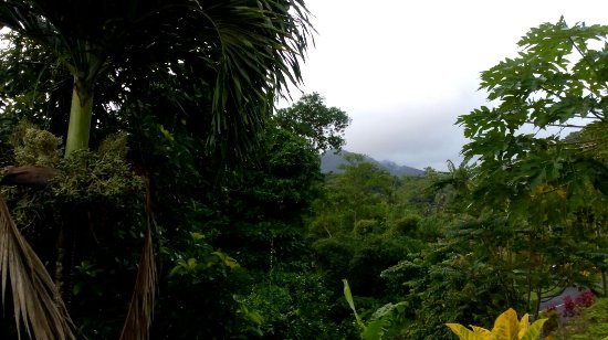 Marigot, Dominica: IMG-20170918-WA0027_large.jpg