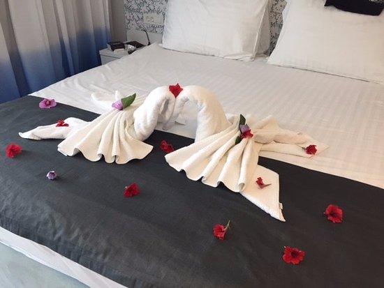 Igrane, Croatia: Hotellin onnittelut syntymäpäivänä:)