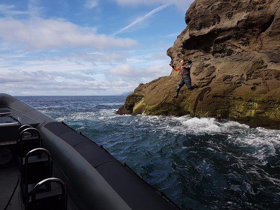 RIB62: jumping into the atlantic