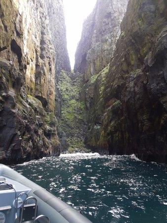 RIB62: inside the gorge - hestur