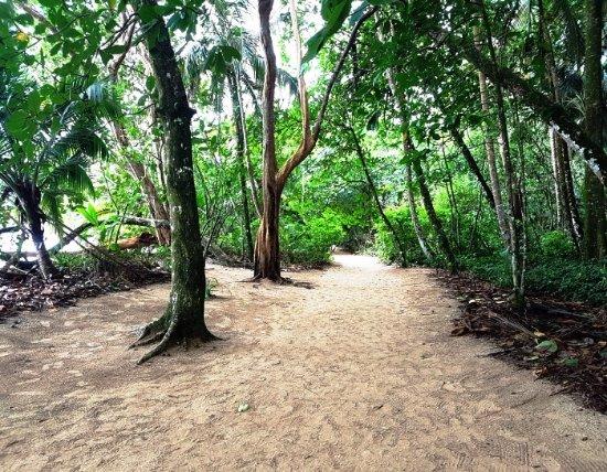 Santa Ana, Costa Rica: Cahuita National Park in Costa Rica