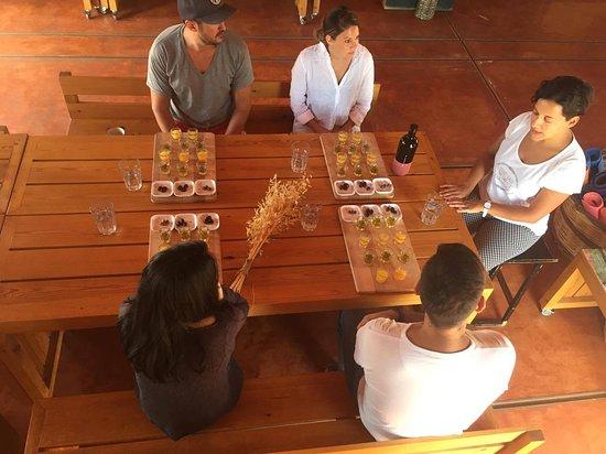 Eumelia Organic Agrotourism Farm & Guesthouse: Olive oil tasting
