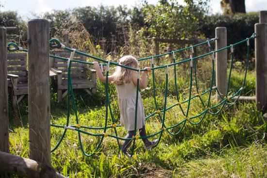 Wheeldon Trees Farm Holiday Cottages : Children's meadow