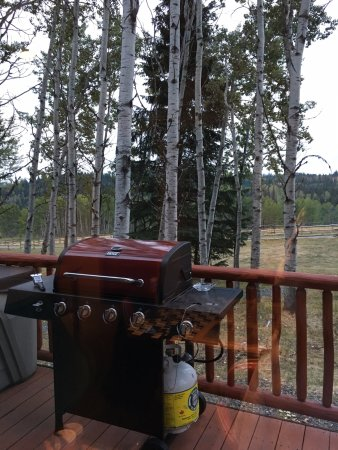 Bridge Lake, Canada: Standing on the deck with barbecue & hot tub.