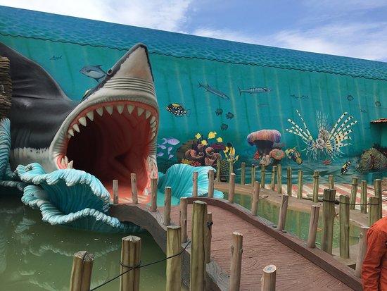 Planet Earth Aquarium Mysuru Mysore India Top Tips