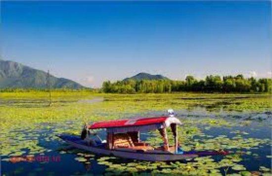 Discover Gulmarg Adventures : shakara in kasshmir