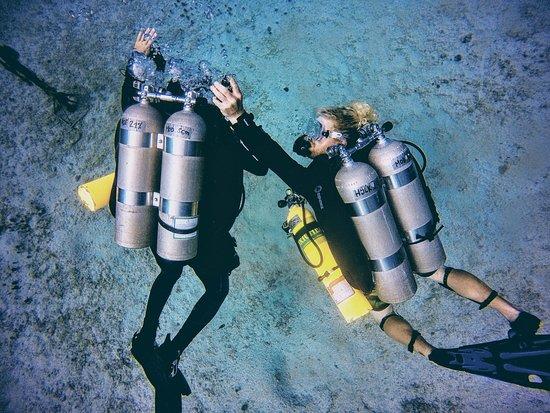 Utila, ฮอนดูรัส: Tec Diving - next level!