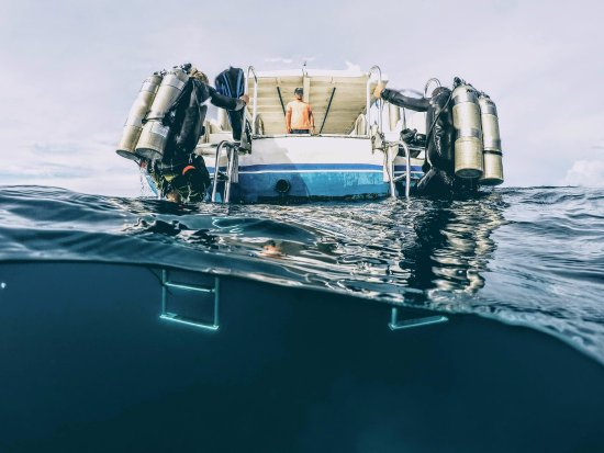 Utila, ฮอนดูรัส: Tec Diving classes available!
