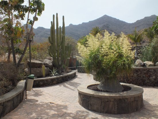 San Nicolas, Spania: Footpath in the cactus garden.