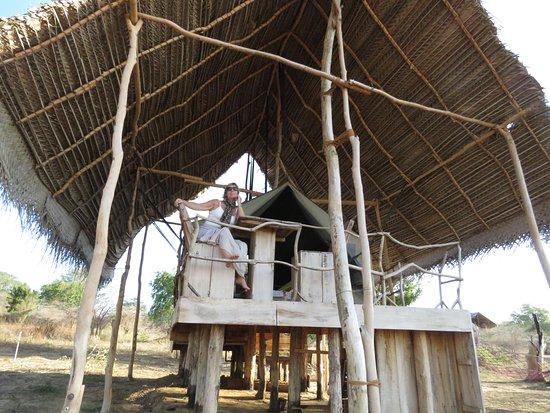 Yala Dream Park tent deck & tent deck - Picture of Yala Dream Park Tissamaharama - TripAdvisor