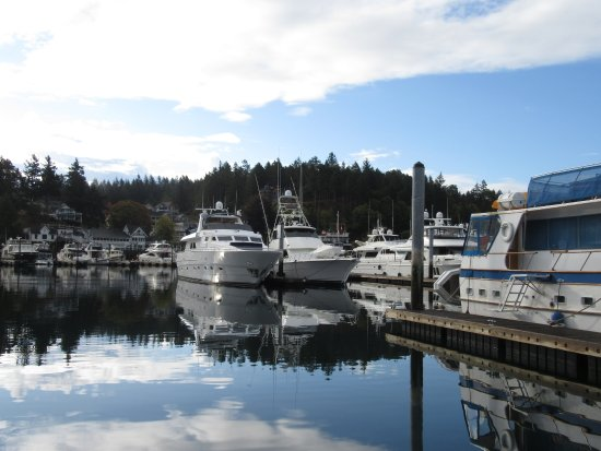 Roche Harbor Resort: Marina