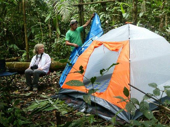 Iquitos Amazon Region, Peru: Posada yanayacu expeditions ofrece diferents tours de aventura,y convivir con la naturaleza